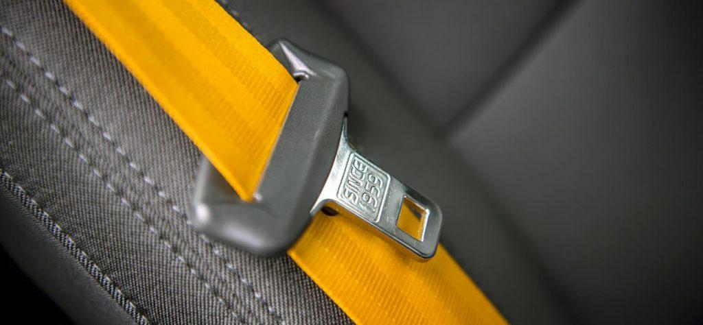 polestar 2 gold seat belt